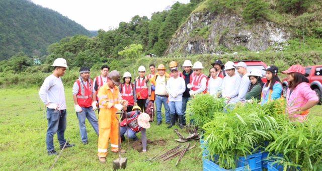Philex kicks off planting trees and tropical plants